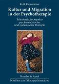 Kultur und Migration in der Psychotherapie (eBook, PDF)