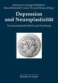 Depression und Neuroplastizität (eBook, PDF)