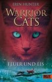 Feuer und Eis / Warrior Cats Staffel 1 Bd.2 (eBook, ePUB)