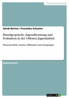 Einzelgespräche, Jugendberatung und Evaluation in der Offenen Jugendarbeit (eBook, PDF)