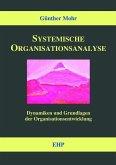 Systemische Organisationsanalyse (eBook, PDF)