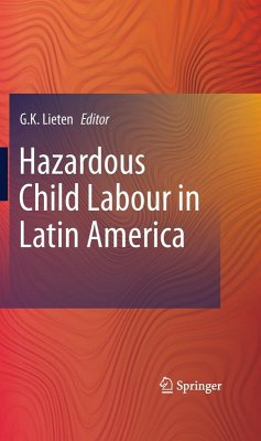 Hazardous Child Labour in Latin America (eBook, PDF)