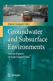 Groundwater and Subsurface Environments (eBook, PDF)