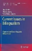 Current Issues in Bilingualism (eBook, PDF)