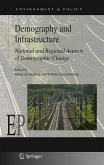 Demography and Infrastructure (eBook, PDF)