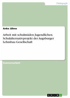 Arbeit mit schulmüden Jugendlichen. Schulalternativprojekt der Augsburger Lehmbau Gesellschaft (eBook, PDF)