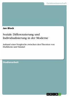 Soziale Differenzierung und Individualisierung in der Moderne (eBook, PDF)