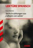 """Sechs Erzählungen aus """"Callejón con salida"""""""