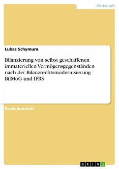 Bilanzierung von selbst geschaffenen immateriellen Vermögensgegenständen nach der Bilanzrechtsmodernisierung BilMoG und IFRS (eBook, PDF)
