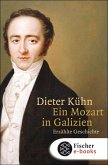 Ein Mozart in Galizien (eBook, ePUB)