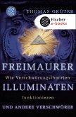 Freimaurer, Illuminaten und andere Verschwörer (eBook, ePUB)