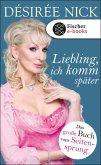 Liebling, ich komm später (eBook, ePUB)