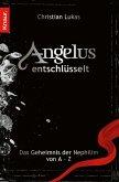 Angelus entschlüsselt (eBook, ePUB)