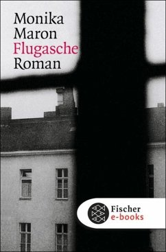Flugasche (eBook, ePUB) - Maron, Monika