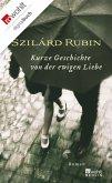 Kurze Geschichte von der ewigen Liebe (eBook, ePUB)