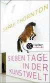 Sieben Tage in der Kunstwelt (eBook, ePUB)