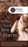 Süchtig nach dem Sturm (eBook, ePUB)