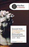 Transformationen der Gefühle (eBook, ePUB)