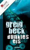 Dunkles Eis (eBook, ePUB)
