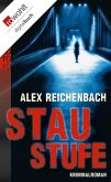 Staustufe (eBook, ePUB)