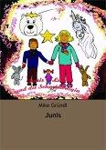 Junis & Luis und die Schneekönigin (eBook, ePUB)