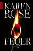 Feuer (eBook, ePUB)