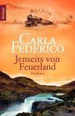 Jenseits von Feuerland (eBook, ePUB)