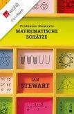 Professor Stewarts mathematische Schätze (eBook, ePUB)