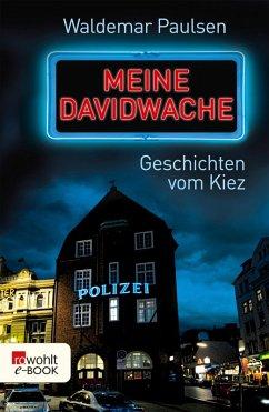 Meine Davidwache (eBook, ePUB) - Paulsen, Waldemar