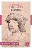 Der Findling (eBook, ePUB)
