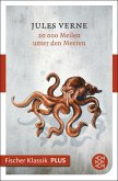 20000 Meilen unter den Meeren (eBook, ePUB)