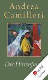 Der Hirtenjunge (eBook, ePUB)