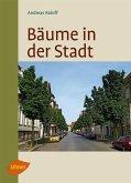 Bäume in der Stadt (eBook, PDF)