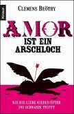 Amor ist ein Arschloch (eBook, ePUB)