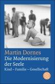 Die Modernisierung der Seele (eBook, ePUB)