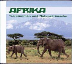 Afrika - Tierstimmen und Naturgeräusche, 1 Audio-CD - Dingler, Karl-Heinz