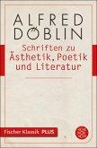 Schriften zu Ästhetik, Poetik und Literatur (eBook, ePUB)