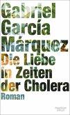 Die Liebe in Zeiten der Cholera (eBook, ePUB)