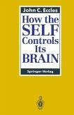 How the SELF Controls Its BRAIN