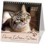 Kleine Katzen-Tatzen 2022. Postkarten-Kalender