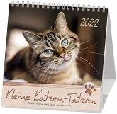 Kleine Katzen-Tatzen 2021. Postkarten-Kalender
