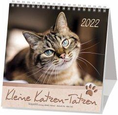 Kleine Katzen-Tatzen 2019. Postkarten-Kalender