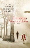 Einsteins Versprechen (eBook, ePUB)