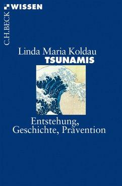 Tsunamis (eBook, ePUB) - Koldau, Linda Maria