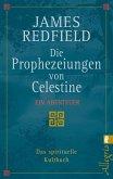 Die Prophezeiungen von Celestine (eBook, ePUB)