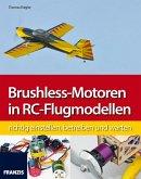 Brushless-Motoren in RC-Flugmodellen (eBook, PDF)
