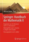 Springer-Handbuch der Mathematik II (eBook, PDF)