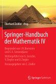 Springer-Handbuch der Mathematik IV (eBook, PDF)