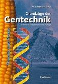 Grundzüge der Gentechnik (eBook, PDF)