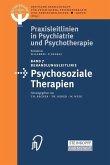 Behandlungsleitlinie Psychosoziale Therapien (eBook, PDF)